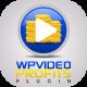 Plugin de marketing d'affiliation WordPress Video Profits