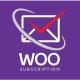 Plugin d'API des abonnements WP WOO