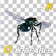 VJ Kaleidoscope - Exotica II - Pack of 7 - 200