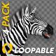 VJ Kaleidoscope - Exotica II - Pack of 7 - 162
