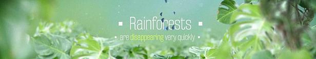 Titres d'aventure dans la jungle de la forêt tropicale