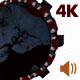VJ Kaleidoscope - Exotica II - Pack of 7 - 243