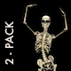 VJ Kaleidoscope - Exotica II - Pack of 7 - 42