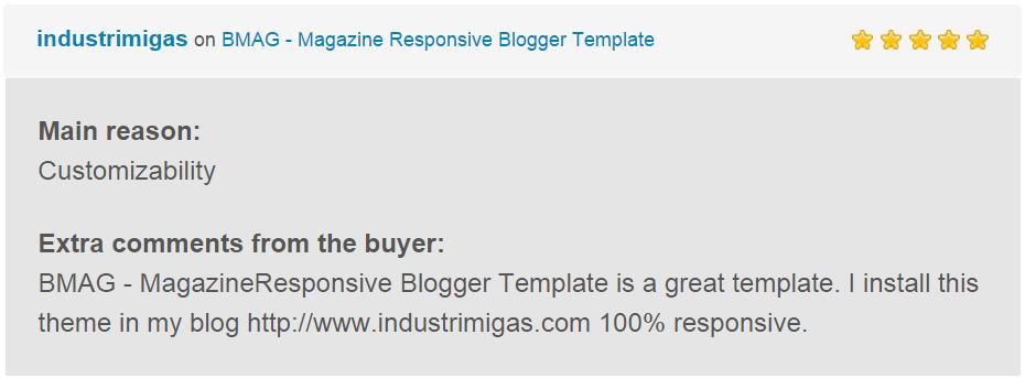 BMAG - Modèle de blogueur réactif pour magazine - 24