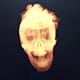 Logo de feu de crâne dévoilé
